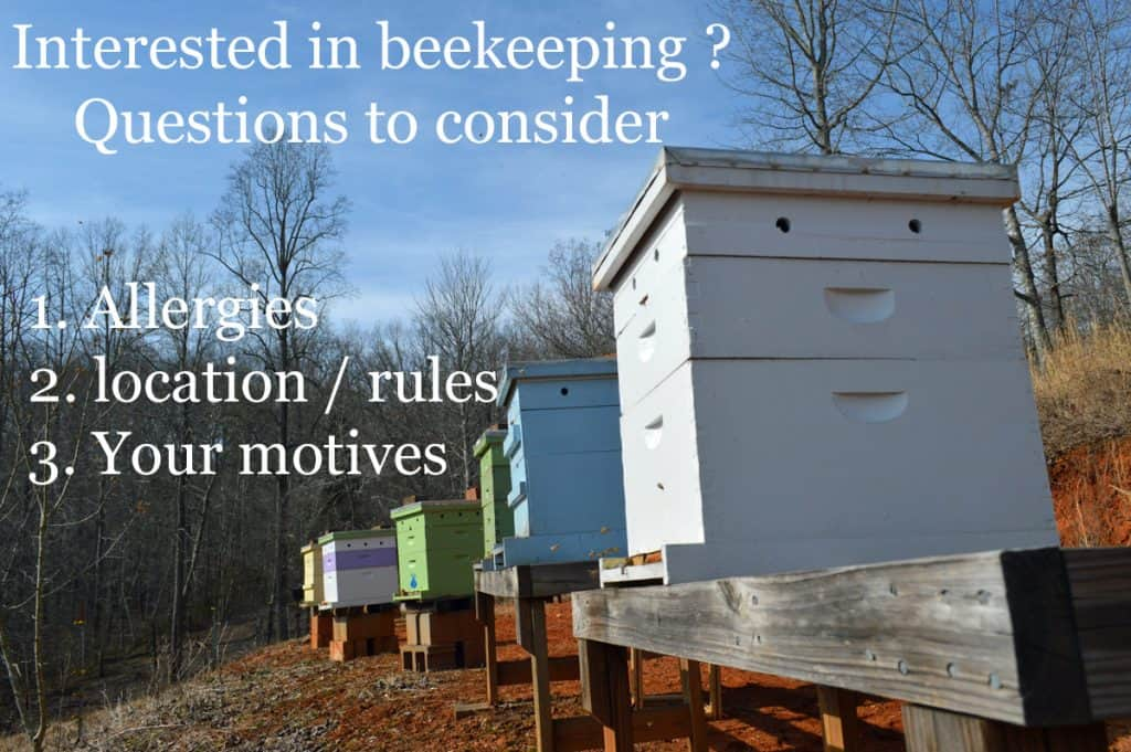 question for new beekeepers to condside - beehives
