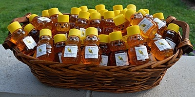 bottles of honey in little bears