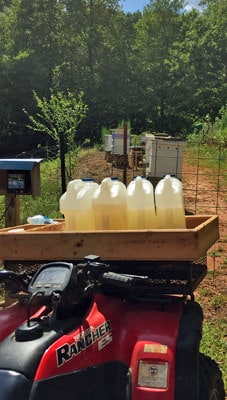 A beekeeper's blog is a great place to learn beekeeping tips and tricks. Carolina Honeybees Farm