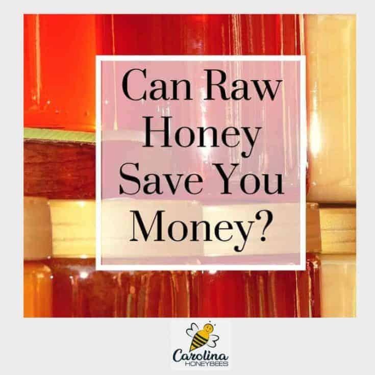 Ways to Use Honey to Save Money