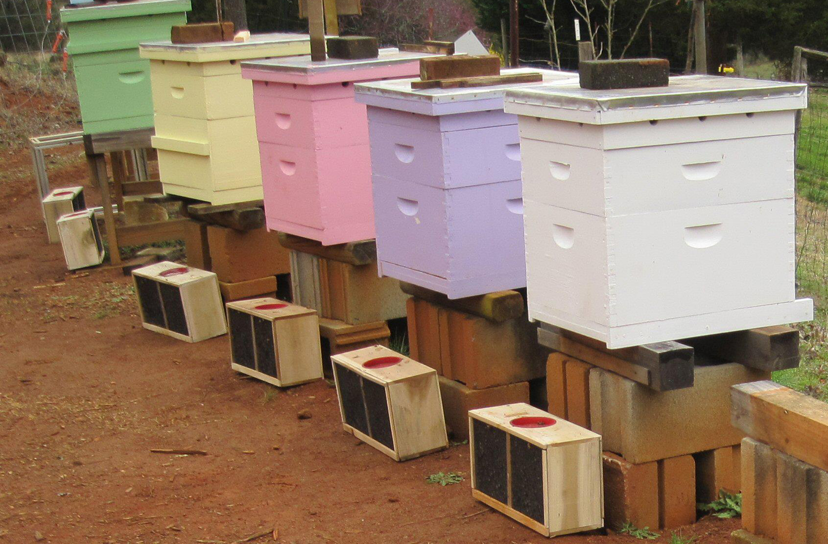 Best Paint For Beehive