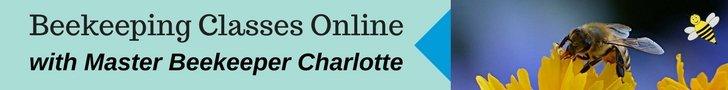 Beekeeping Class online - Carolina Honeybees
