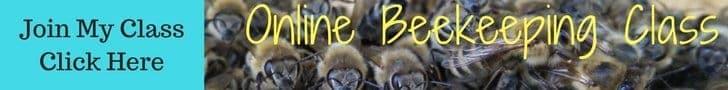 Online beekeeping class for new beekeepers.