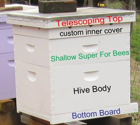 Parts of a Beehive-What You Really Need