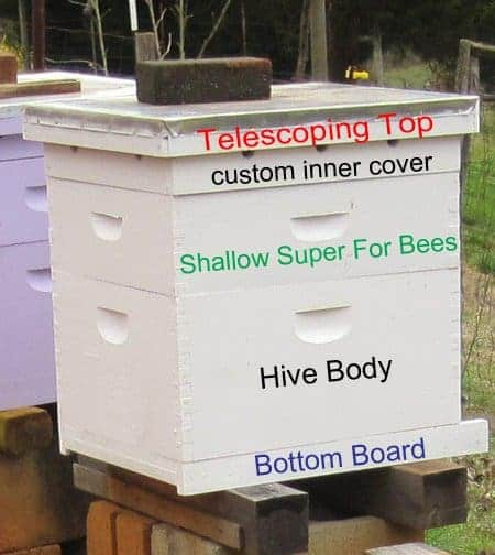 langstroth beehive with basic parts of a beehive marked - bottom board, hive body, shallow super, inner cover, top