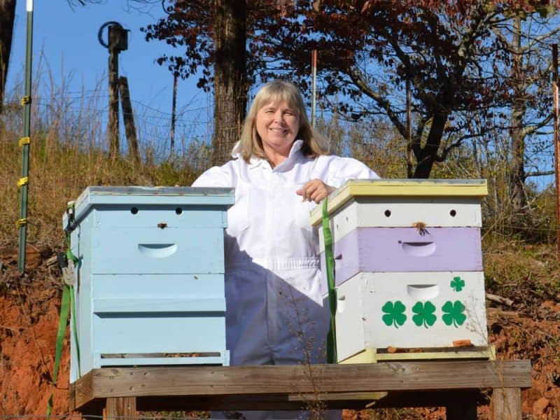 Learn beekeeping tips and ideas from Master Beekeeper, Charlotte Anderson. Raising bees is fun. An achievable goal with some research and planning. Carolina Honeybees