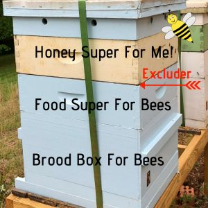 The queen excluder goes under your honey collection boxes.