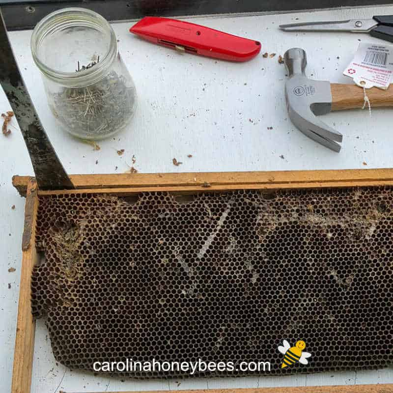 old beeswax frame of comb