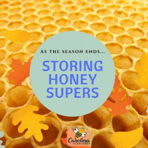storing honey supers at end of season