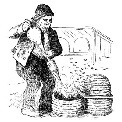 Early bee keeper with skep hive image.