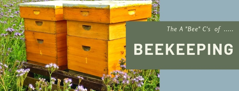 the a b cs of beekeeping classes