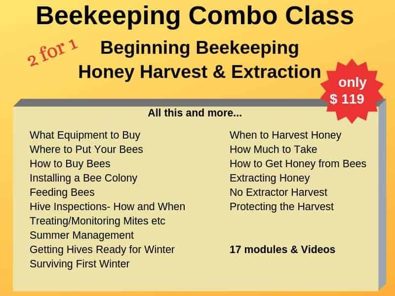 beekeeping class information