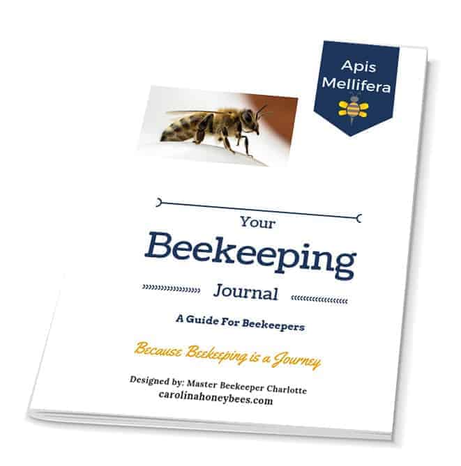 Your Beekeeping Journal - By Master Beekeeper Charlotte