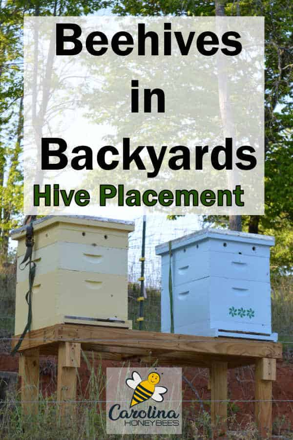 colorful beehives on backyard stand - beehives in backyards, hive placement
