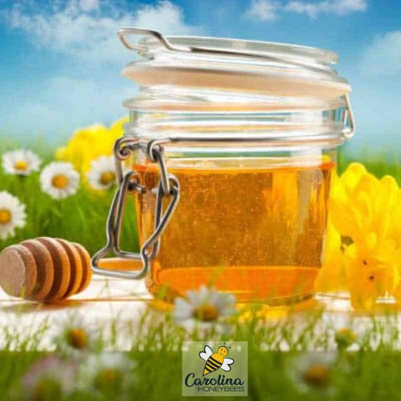 honey in a sealing jar for proper storage