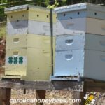 established bee hives ready to move
