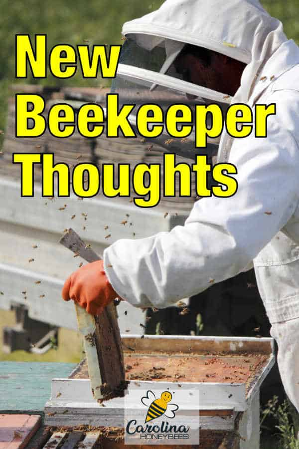 beekeeper inspecting hives - new beekeeper thoughts