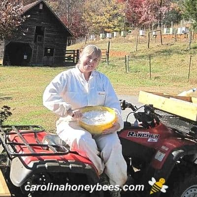 Beekeeper with bowl of sugar cake to feed bees image.