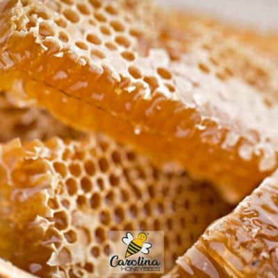 cut sections of honey in the comb