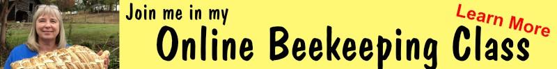 online beekeeping class