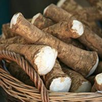 Horseradish Root, Sauget, 6 ounces
