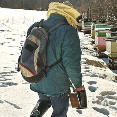 Beekeeper walks in snow to complete winter beekeeping tasks