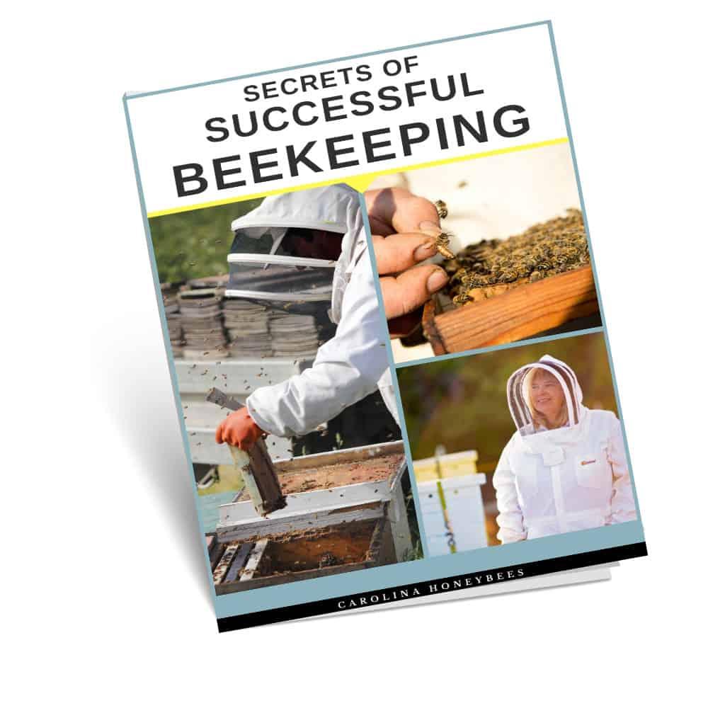 successful beekeeper book
