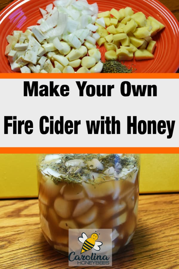 ingredients for fire cider - make your own fire cider honey tonic recipe