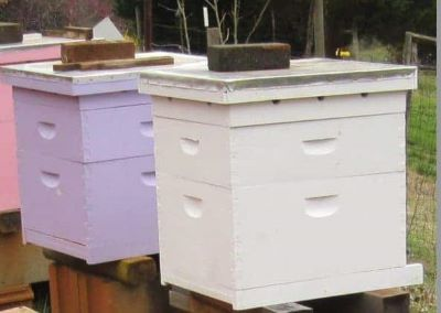 image of colorful beehives with brick on top for identification