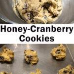 raw cookie dough - honey cranberry cookies