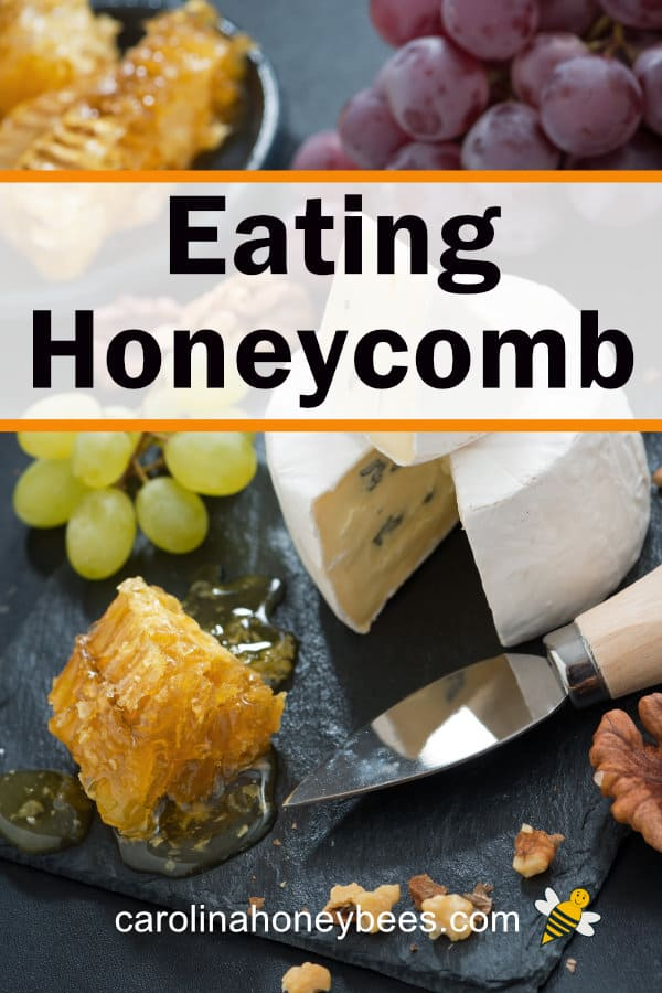 small pieces of honeycomb, cheese and grapes - eating honeycomb