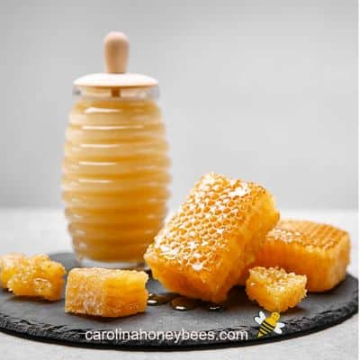 small pieces of raw honey comb sections