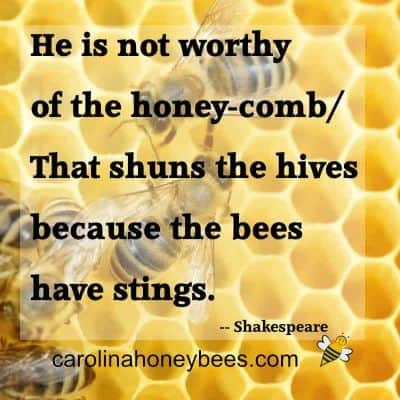 A famous honey bee quote by Shakespear image.