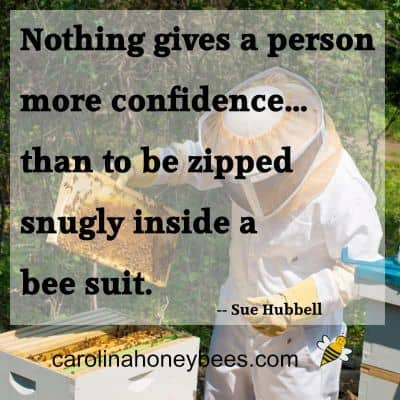 Image about a bee quote from sue hubble on the safety of a bee suit image.