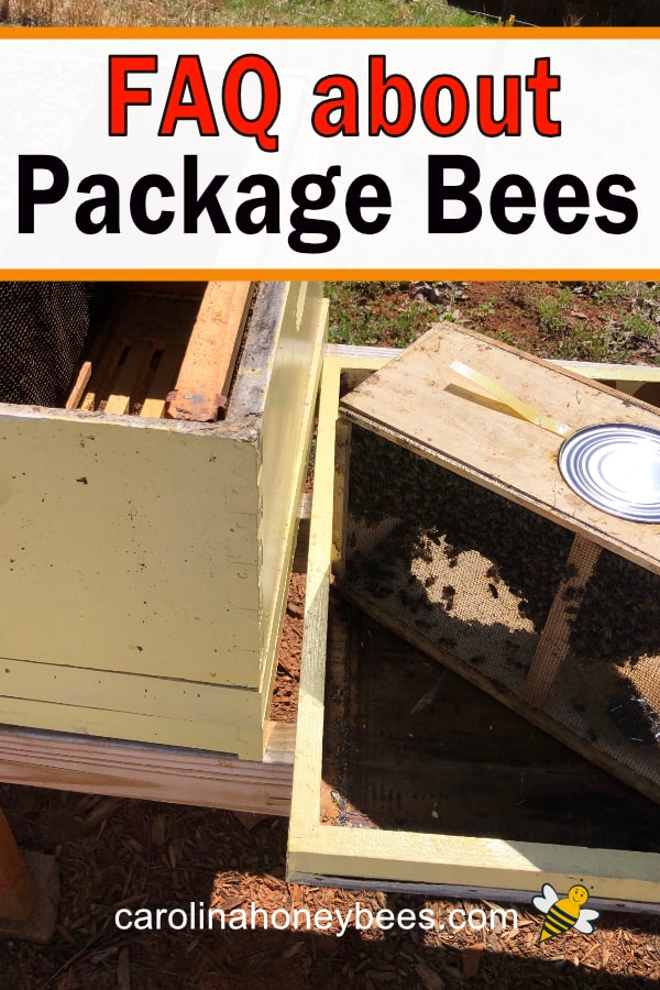 open beehive and bee package - FAQ about Package Bees