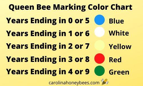 queen bee color marking chart