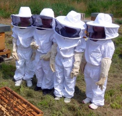 Kids dressed in protective bee clothing image.