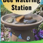 picture of bee watering station made with a clay pot and saucer
