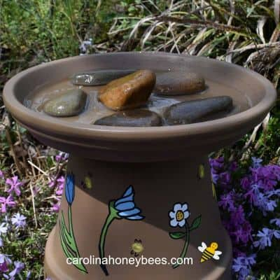 picture of finished bee watering station with rocks and water