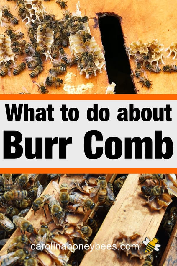 excess wax construction inside a bee hive - what to do about burr comb