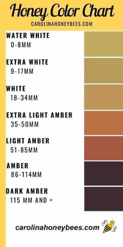 Standard honey color chart image.