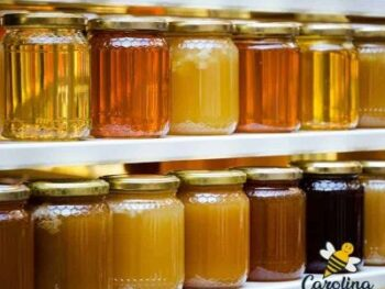 storing honey in glass jars on shelf