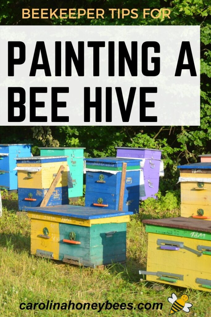 colorful hives - painting a bee hive