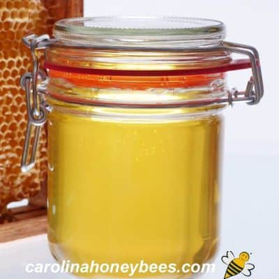 picture of a small jar of honey stored in glass jar with lid