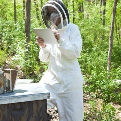 beekeeper in a white bee suit