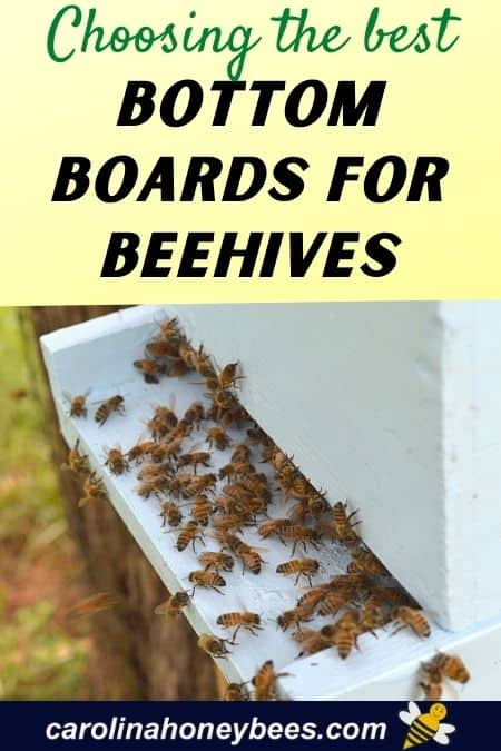 Langstroth hive entrance with bees choosing the best bottom boards for beehives image.