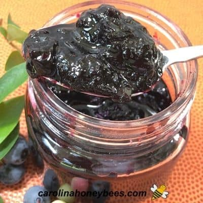 finished blueberry honey syrup in a glass jar