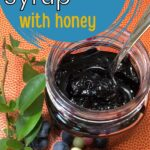 Homemade blueberry syrup made with honey in a jar image.