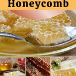 Chunks of raw comb how to eat honeycomb image.