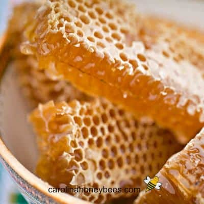 Cut pieces of chunk honey comb in a bowl image.